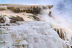 Yellowstone National Park, Wyoming:<br /> Minerva Spring and terrace, travertine patterns in thermal steam