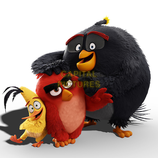 The Angry Birds Movie (2016) <br /> Chuck (Josh Gad), Red (Jason Sudeikis) and Bomb (Danny McBride) <br /> *Filmstill - Editorial Use Only*<br /> CAP/KFS<br /> Image supplied by Capital Pictures
