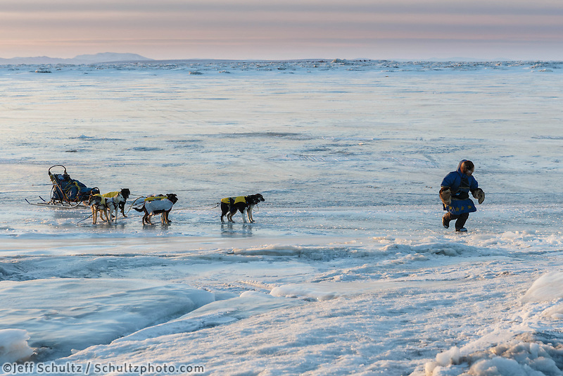 Abbie West leads her dogs to the trail on the glare ice of Norton Bay in front of Koyuk on Monday March 10, during the Iditarod Sled Dog Race 2014.<br /> <br /> PHOTO (c) BY JEFF SCHULTZ/IditarodPhotos.com -- REPRODUCTION PROHIBITED WITHOUT PERMISSION