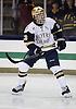 Notre Dame Hockey 2014-2015