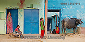 Tom Mackie, LANDSCAPES, LANDSCHAFTEN, PAISAJES, pano, photos,+Asia, India, Indian, blue, color, colorful, colour, colourful, cow, cows, family, girl, horizontal, horizontals, panorama, pa+noramic, red, rest of the world, restoftheworldgallery, sacred,Asia, India, Indian, blue, color, colorful, colour, colourful,+cow, cows, family, girl, horizontal, horizontals, panorama, panoramic, red, rest of the world, restoftheworldgallery, sacred++,GBTM130176-1,#L#