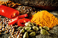 Fresh spices food photos
