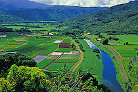 Hanalei Valley and river, North shore Kauai