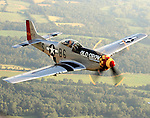 "The P51 Mustang ""Old Crow"" flies over the Ohio countryside. The Mustang, piloted by Jim Hagedorn, was in Dayton to honor 2008 National Aviation Hall of Fame enshrinee Clarence E. ""Bud"" Anderson, who flew the original ""Old Crow"" on his way to becoming a triple ace during WWII."