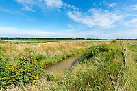 Large farm drain on field boundary - Lincolnshire, July