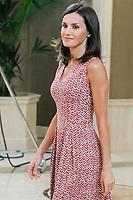 JUL 19 Queen Letizia attends royal audiences at zarzuela palace