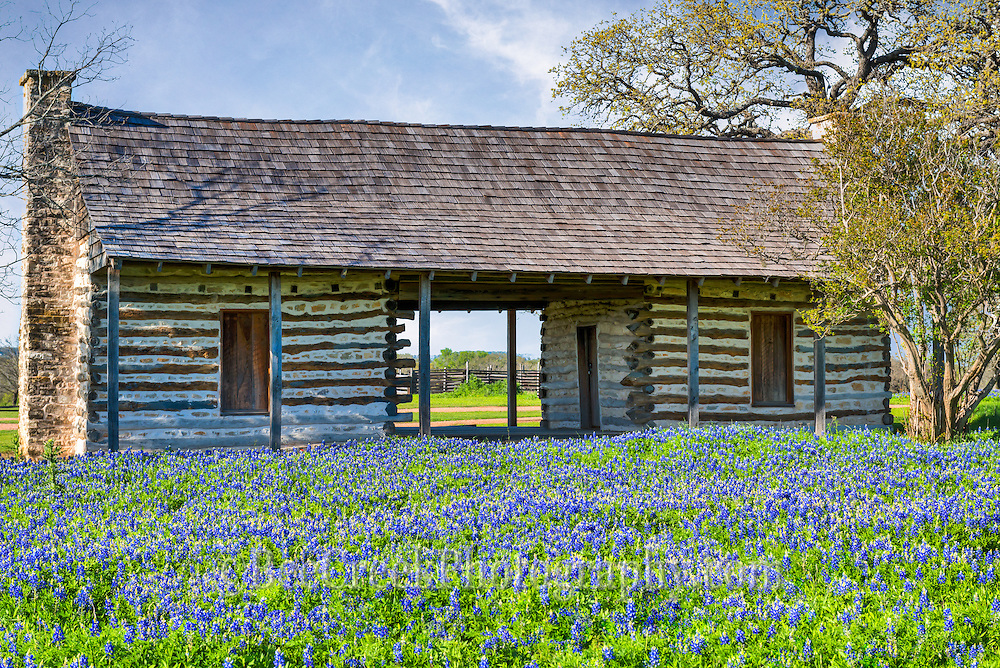 Heres another image we capture of a bluebonnet field in front of an old log cabin in the Texas Hill Country.  We thought this would be a nice landscape image because you just dont see log cabins with bluebonnets every day some thoughtful person added bluebonnets for us to photograph!