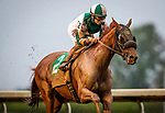 OCT 06: Blue Prize with Joe Bravo wins the Juddmonte Spinster Stakes at Keeneland Racecourse, Kentucky on October 06, 2019. Evers/Eclipse Sportswire/CSM