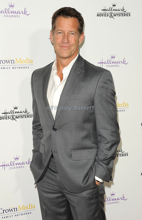 James Denton arriving at the Hallmark Channel Winter 2015 TCA, held at Tournament House in Pasadena CA. on January 8, 2015
