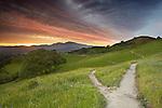 Trails, Mt. Diablo near Walnut Creek, Central California, USA.