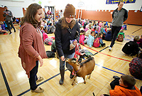 NWA Democrat-Gazette/DAVID GOTTSCHALK Claire Mitchell takes Zelda out of Washington Elementary School Wednesday, November 28, 2018, after an assembly where Ashley McLarty, principal and Ruth Mobley, assistant principal both kissed the goat at the school in Fayetteville. The kissing of the goat was a reward to the student body for collecting over 500 boxes of macaroni and cheese for the Northwest Arkansas Food Bank.