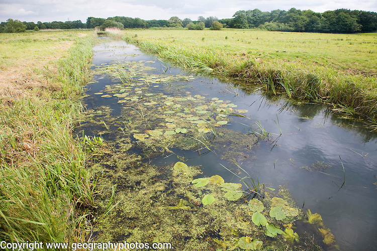 Drainage channel ditch in marshland at Geldeston marshes, Suffolk, England