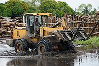 MOZAMBIQUE, Beira, timber trade of chinese companies for export to China, storage place for logged trees from Tete province / MOSAMBIK, Beira, Holzhandel von chinesischen Firmen fuer Export nach China, Lagerplatz fuer Baumstaemme aus der Provinz Tete, Kahlschlag in Mosambik, taeglich kommen hunderte Lastwagen mit Holz in Beira an