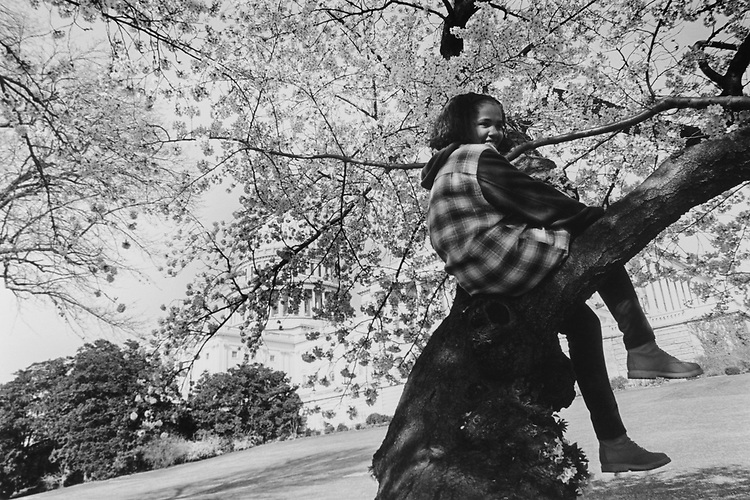 Marina Britt (age 12) from Queens, New York, poses for dad in a Cherry blossom tree on July 6, 1994. (Photo by Maureen Keating/CQ Roll Call via Getty Images)