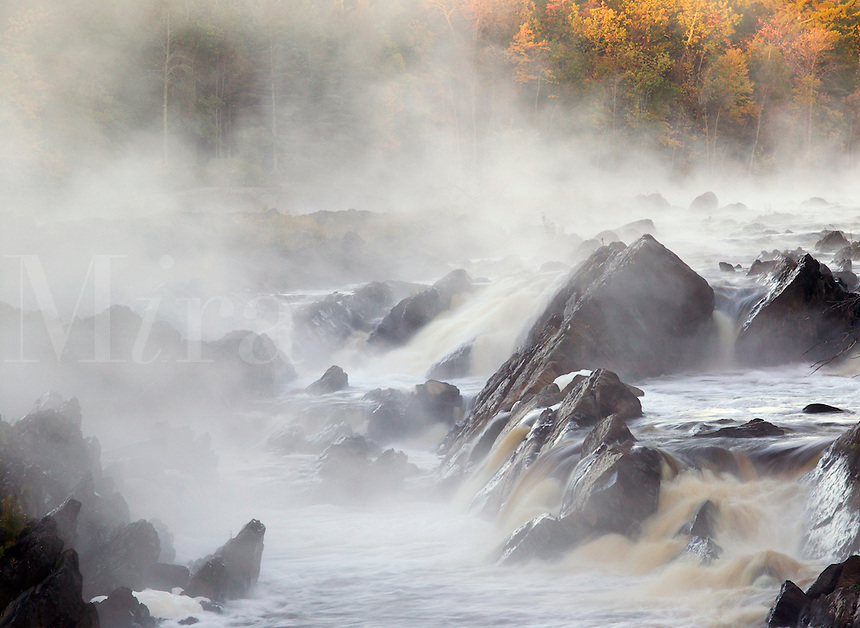 St. Louis River and fog, Jay Cooke State Park, Minnesota