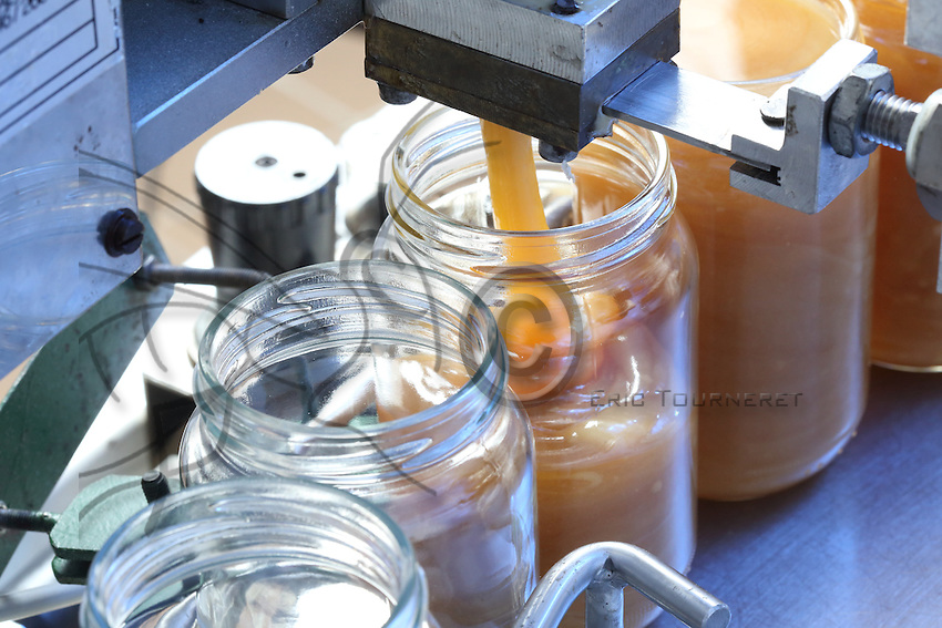 Bottling of honey in a modern honey house.///Mise en pot du miel dans une miellerie moderne par l'apiculteur Stephane Lebrero.