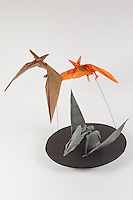 Origami pterosaurs. Flying pterosaurs designed by Robert Lang and folded by Michael Verry. Grey pterosaur designed by Jason Ku and folded by Alfred Kwan.