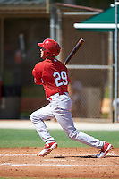 GCL Cardinals center fielder Dylan Carlson (29) at bat during the first game of a doubleheader against the GCL Marlins on August 13, 2016 at Roger Dean Complex in Jupiter, Florida.  GCL Cardinals defeated GCL Marlins 4-2 in a continuation of a game originally started on August 8th.  (Mike Janes/Four Seam Images)