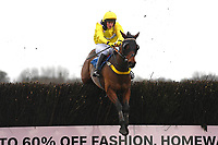Betalatethanneva ridden by Tabitha Worsley in The Weatherbys Racing Bank Foreign Exchange Handicap Chase  during Horse Racing at Wincanton Racecourse on 5th December 2019