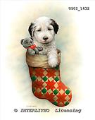 GIORDANO, CHRISTMAS ANIMALS, WEIHNACHTEN TIERE, NAVIDAD ANIMALES, paintings+++++,USGI1632,#XA# dogs,puppies