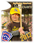 2012 Burlington American Sunflowers
