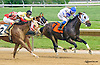 Avanzando winning at Delaware Park on 5/30/15