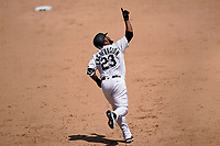 25th July 2020, Chicago, IL, USA;  Chicago White Sox designated hitter Edwin Encarnacion (23) celebrates his homerun in the fifth inning against the Minnesota Twins at Guaranteed Rate Field on July 25, 2020 in Chicago, IL.