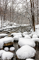 A spring snow storm covers rocks along Nine Mile Creek.
