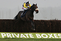 Cabinet Minister ridden by Jason Maguire jumps the last in the Rickety Bridge Handicap Chase (In Aid of West Berkshire Mencap) - Horse Racing at Newbury Racecourse, Berkshire