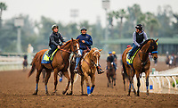 ARCADIA, CA - APRIL 02: Justify and Drayden Van Dyke head off the track with workmate Hoppertunity after their workout at Santa Anita Park on April 02, 2018 in Arcadia, California. (Photo by Alex Evers/Eclipse Sportswire/Getty Images)
