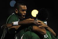Envigado FC vs. Deportivo Cali, 02-06-2013