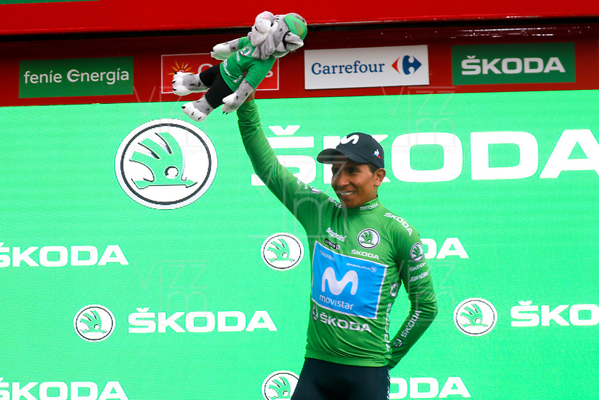 ESPAÑA, 31-08-2019: Nairo Quintana (ESP - MOVISTAR) celebra con maillot verde líder de los puntos después después de la etapa 8, hoy, 31 de agosto de 2019, que se corrió entre Valls e Igualada con una distancia de 166,9 km como parte de La Vuelta a España 2019 que se disputa entre el 24/08 y el 15/09/2019 en territorio español. / Nairo Quintana (ESP - MOVISTAR) celebrates with the green points leader jersey after the stage 8 today, August 31, 2019, from Valls to Igualada with a distance of 166,9 km as part of Tour of Spain 2019 which takes place between 08/24 and 09/15/2019 in Spain.  Photo: VizzorImage / Luis Angel Gomez / ASO<br /> VizzorImage PROVIDES THE ACCESS TO THIS PHOTOGRAPH ONLY AS A PRESS AND EDITORIAL SERVICE AND NOT IS THE OWNER OF COPYRIGHT; ANOTHER USE HAVE ADDITIONAL PERMITS AND IS  REPONSABILITY OF THE END USER