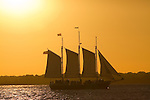 Schooner Pride Sailboat Sailing the Charleston Harbor during Sunset