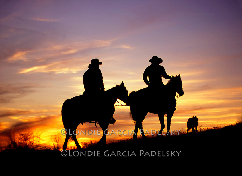 Cowboys riding the range at sunset, San Luis Obispo on the Central Coast, California