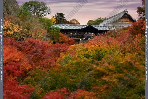 People on Tsutenkyo bridge at Tofukuji temple in a colorful autumn scenery. Tofuku-ji, Higashiyama-ku, Kyoto, Japan 2017. Image © MaximImages, License at https://www.maximimages.com