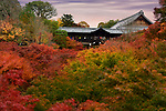 People on Tsutenkyo bridge at Tofukuji temple in a colorful autumn scenery. Tofuku-ji, Higashiyama-ku, Kyoto, Japan 2017.