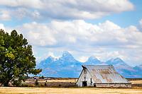 A huge barn enhances the agricultural landscape of farmland west to the Grand Tetons near Ashton Idaho