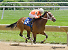 Countessa A  winning at Delaware Park racetrack on 6/14/14