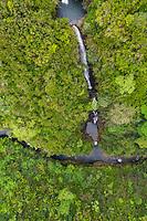 'Akaka Falls, Big Island of Hawai'i.