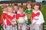 Demonstrating their GAA skills at Rathmore Cúl Camp. .Front L-R Gavin Barry, Jaydan McCarthy, Lainey Harty. .Back L-R Leah Murphy, Sean Hurley and Chloe McCarthy.