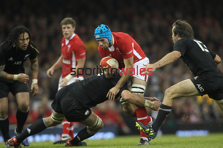 Cardiff, WALES - November 24:.Autumn International.Wales v New Zealand.No way through for Justin Tipuric as the All Blacks defence closes in..24.11.12..©Steve Pope - Sportingwales