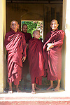 Monks At Shwezigon Pagoda