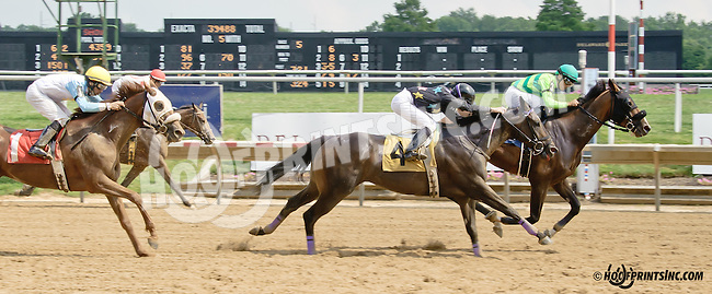 Vindicated winning at Delaware Park on 7/26/14