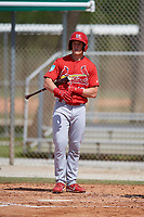 St. Louis Cardinals Conner Capel (19) during a Minor League Spring Training Intrasquad game on March 28, 2019 at the Roger Dean Stadium Complex in Jupiter, Florida.  (Mike Janes/Four Seam Images)