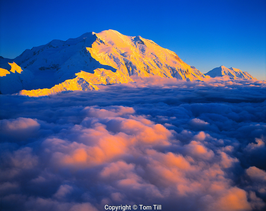 Denali (Mount Mckinley) above Clouds, Denali National Park & Preserve, Alaska    Aerial view at sunset  20320 Fet
