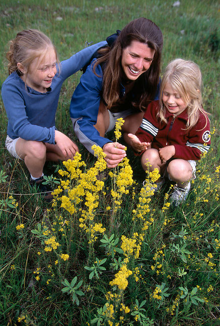 A mother and her daughters experience wildflowers in Rocky Mtn Nat'l Park, CO