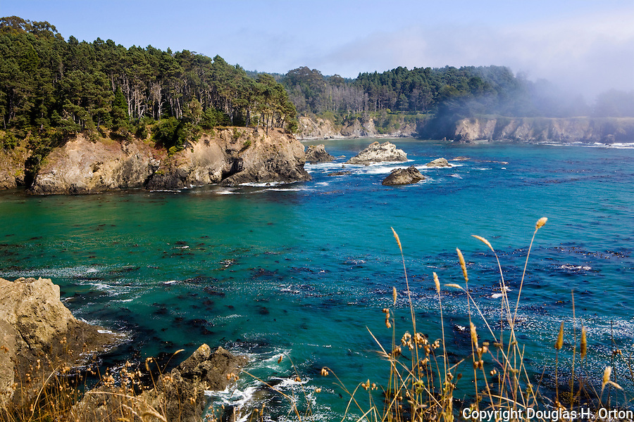 Surf surges into a cove near Salt Point.  North of Bodega Bay along the California coastline and famous U.S. Highway 1 lie many wonderful beach accesses, headlands, and state parks along with pastoral and mountain views inland.