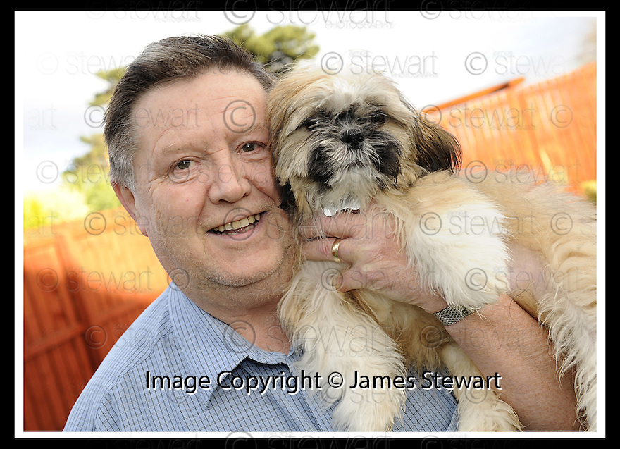 02/12/2008  Copyright Pic: James Stewart.File Name : sct_jspa14_bil_munnoch.BILL MUNNOCH FROM FALKIRK WITH SHIH-TZU, HAMISH. MR MUNNOCH HAS OFFERED HAMISH TO AMERICAN PRESIDNT ELECT BARAK OBAMA AS A PET FOR HIS CHILDREN......James Stewart Photo Agency 19 Carronlea Drive, Falkirk. FK2 8DN      Vat Reg No. 607 6932 25.Studio      : +44 (0)1324 611191 .Mobile      : +44 (0)7721 416997.E-mail  :  jim@jspa.co.uk.If you require further information then contact Jim Stewart on any of the numbers above.........