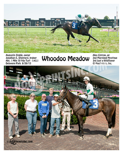 Whoodoo Meadow winning at Delaware Park on 8/26/2013