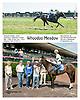 Whoodoo Meadow winning at Delaware Park on 8/26/2013